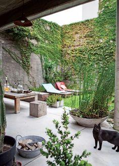 Jardin sur le toit, encore une fois