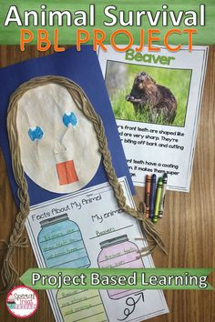 Project Based Learning : Animal Adaptations Activities and Project NGSS Cool Science Fair Projects, Science Activities For Kids, Writing Activities, Spring Activities, Science Books, 1st Grade Science, Elementary Science, Animal Projects, Book Projects