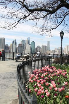 Spring in NYC Brooklyn Heights Promenade