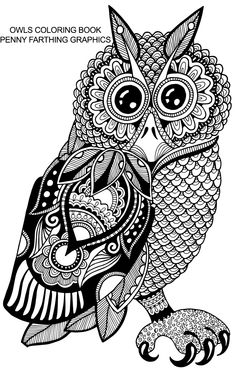 "From ""Owls Coloring Book"""