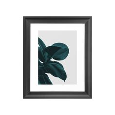 Balance and positioning are key elements in artwork. The placement of a partial plant in the Arm's Reach Art Print is as intriguing and visually compelling as is its dramatic use of color and shading. ...  Find the Arm's Reach Art Print, as seen in the #IndustrialTropics Collection at http://dotandbo.com/collections/industrial-tropics?utm_source=pinterest&utm_medium=organic&db_sku=121887