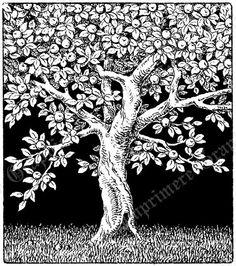 Vintage Digital Image Fruit Apple Tree by ImprimereGraphics, $3.00