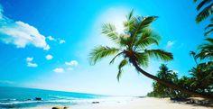 BARBADOS   #shades #silisunglassesaustralia #cool #summer #sky #ocean #beach #gym #water #sea #island #bondi #sun #fun #leisure #travel #heart #love #adventure #escape #relax #holiday #chill #sale #swim #fish #beautiful #dive #palmtree