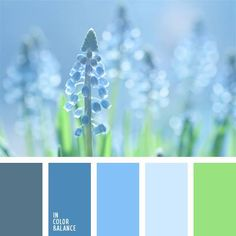 Color palettes 175640454195778429 - This combination of pastel shades will be ideal in decoration of an apartment. If you prefer cold colors, this palette is just for you. Scheme Color, Logo Color Schemes, Colour Pallette, Color Palate, Color Combos, Color Azul, Green Palette, World Of Color, Color Swatches