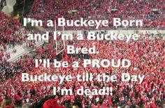 Ohio State Buckeyes Football!