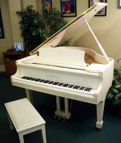I want a white grand piano in an all white living room some day