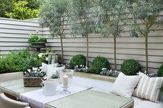 beautiful feeling of calm this white garden creates