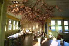 Artificial Pink Blossom Tree was design and built for restaurant bar area at Louis Brown Dalgety Bay Artificial Cherry Blossom Tree, Pink Blossom Tree, Artificial Tree, Flowering Trees, Deciduous Trees, Tree Restaurant, Pink Restaurant, Tree Bar, Fake Trees