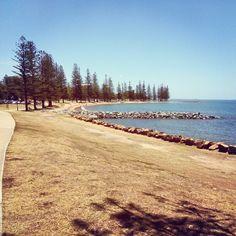 Scarborough Beach Park in Scarborough, QLD