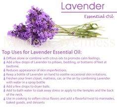 Lavender Soap Recipe Is Easy And Smells Delicious | The WHOot