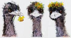 Three emus goes  Painting by Katrina Browning   http://www.kynetondaffodilarts.org.au/