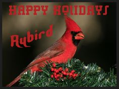 Christmas music and videos  Happy Holidays from Rybird  free music downloads