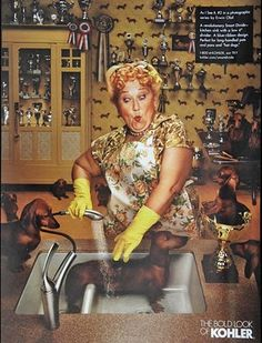 Dachshunds for Kohler   My fav AD