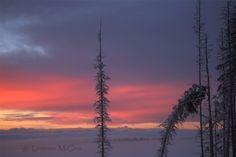 Foggy Sunset on the Alaska Highway Bucking Horse BC [OC 1600x1068]