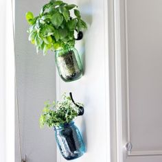 http://www.domestically-speaking.com/hanging-herb-mason-jars/