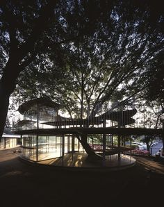 "In Tachikawa, Tokyo, Japan at Fuji Kindergarten complex, Tezuka Architects completed ""Ring Around a Tree"". The ""Ring around a tree"" provides more classroo Kindergarten Design, Kindergarten Centers, Kindergarten Classroom, Takaharu Tezuka, Tree Deck, Learning For Life, Modern Metropolis, Backyard Projects, Backyard Designs"