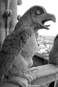 Notre Dame gargoyle - I have been up close and personal - yes, I have.