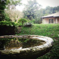 #green #holidays #hillcountry #instatour #instagreen #instatrees #instanature #instaplaces #instatravel #instaholidays #instasrilanka #instavacation #instamountains  #mountains #nature #sky #srilanka #srilankan #trees #travel #tropical #travelgram #vacation  #tea  #water #reflection #nature #instawater #garden #grass #instagarden by fazmeerslk