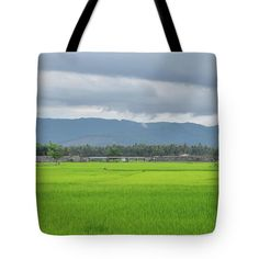 Field Tote Bag featuring the photograph Rice Fields. by Nhi Ho Thi Xuan