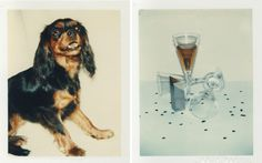 andy warhol: unseen polaroids from 1970 to 1987