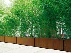 Corten Steel Trough Planters by Adezz Garden Troughs, Trough Planters, Garden Planters, Bamboo Planter, Corten Steel Planters, Potted Bamboo, Bamboo Fence, Fence Design, Garden Design