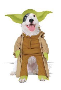 Star Wars Yoda Costume for dog pet