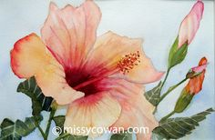 This is a painting of a lovely, peach colored hibiscus flower that I found at a local public garden. Matted Size: 15.5 x 12    Double matted with acid free white mats and foam core backing  This painting will be shipped flat, wrapped in tissue and packaged in sturdy cardboard    If you are interested in purchasing the frame as well, which is a graphite colored metal, please contact me for a price.  Watermark will not appear on painting.  I retain all reproduction and copyrights to my…