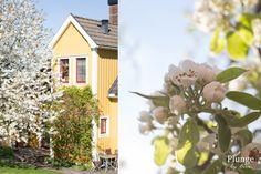 Kesäpäivä Ronnebyssä
