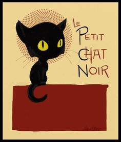 Le petit chat noir. Cute.