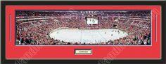 One framed large Washington Capitals stadium panoramic with a customizable nameplate*, double matted in team colors to 39 x 13.5 inches.  The lines show the bottom mat color. $139.99         @ ArtandMore.com