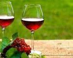 Informacion general del vino