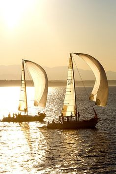 Ships sailing in the golden dusk of a summer evening!