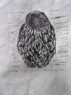 little owl - linocut print - Narelle Badalassi, Australia