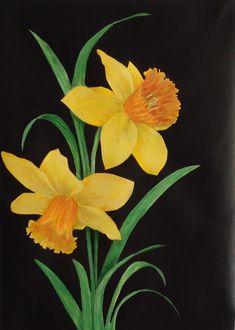 Daffodils on 30x42cm canvas sheet