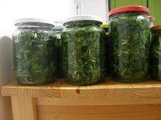 SENZA CARNE: Jak uchovat medvědí česnek Marmalade, Natural Herbs, Korn, Preserves, Pesto, Pickles, Kimchi, Cucumber, Herbalism