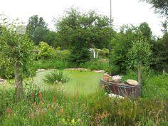 Florence Nightingale - Den Haag Centraal deel van het tuinpark met een mooie paddenpoel en dito omgeving, gecombineerd met tuinkunst.