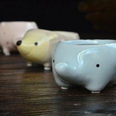 Kawaii Little Animals Ceramic Flowerpot Pig Elephant Hedgehog Planter On Sale Cute Succulent Plants Flower Pot #Affiliate