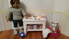 18 inch doll Pet Store Stand complete with treats by FuzzyButtFarm
