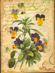 Favorite  Like this item?    Add it to your favorites to revisit it later.  Pansy Collage on Canvas