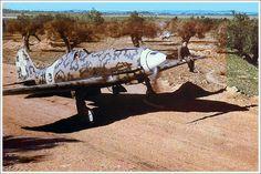 Macchi C-202 Folgore | tormentor4555 | Flickr