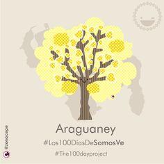 """16 de 100. """"El Araguaney""""  Nuestro árbol Nacional, alegre y primaveral.  #Los100DíasDeSomosVe #the100dayproject  #folklorevenezolano #frasesvenezolanas #ExpresionesVenezolanas #Venezuela #Venezolanos #Venezolanas #Venezuelan #VenezolanosEnElExterior #DiseñoGráfico #DesignersVenezuela #Arbol #Tree #Araguaney #Alegre #Primaveral  #Creatividad #Creativity #Vector  #DigitalIllustration  #Design #Kawaii #Cute #Folklore #SomosVe"""