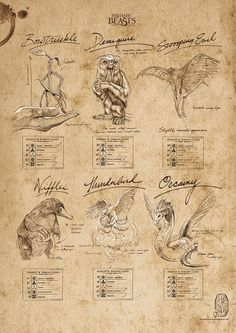 Fantastic Beasts and Where to Find Them™ (Beasts Sketchbook) MightyPri.- Fantastic Beasts and Where to Find Them™ (Beasts Sketchbook) MightyPri… Fantastic Beasts and Where to Find Them™ (Beasts… - Arte Do Harry Potter, Theme Harry Potter, Harry Potter Room, Harry Potter World, Harry Potter Beasts, Harry Potter Printables, Beast Creature, Arte Obscura, Art Mural