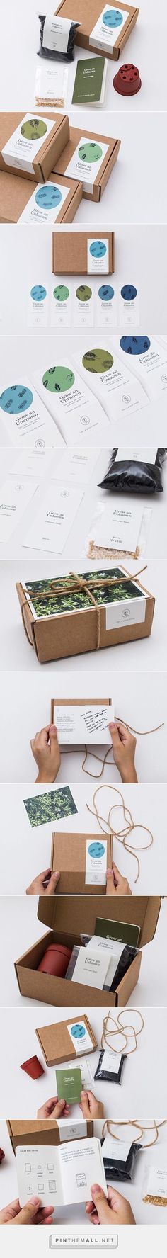 TAKE A GREEN BREAK: Unknown Seed Kit on Behance... - a grouped images picture - Pin Them All