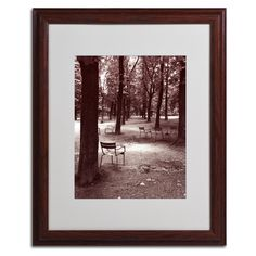 Jardin du Luxembourg Chairs by Kathy Yates Matted Framed Photographic Print