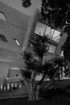 Issam Fares Institute. Lebanon, Beirut
