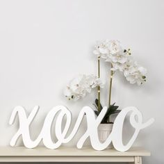"""Winston Porter This Large Script XOXO Wood Cut Out Word Letter Blocks will make a touching statement hanging on your wall or freestanding on any table, mantel or shelf. Crafted from solid wood, this wood wall decor piece is 1.25"""" deep adding value and allowing it to stand freely. Finished in an elegant washed gray finish, this gorgeous accent piece adds a rustic farmhouse feel to any bedroom, living room, entryway or dining room. Ships ready to hang with two drop-in keyhole brackets that… Decorative Spheres, Decorative Objects, Decorative Pillows, Decorative Boxes, Word Wall Decor, Metal Wall Decor, Wall Decor Online, Beaded Garland, Black And White Abstract"""