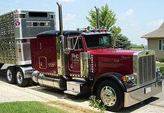 Very Nice Color - 2004 Peterbilt 379 Flat-top Livestock Trucking