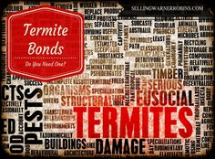Do I Need a Termite Bond