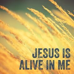 You can take my dry bones breathe life into this skin. You called me by name Raised me to life again. You can calm the oceans speak peace into my soul. Take me as I am. Awaken my heart to beat again. Oh Jesus alive in me. (Source: Hillsong United)