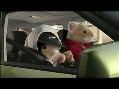 """Kia Motors """"Hamster Rap"""" 2010 Commercial"""
